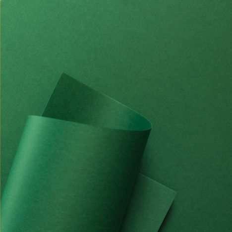 popset_cactus-green