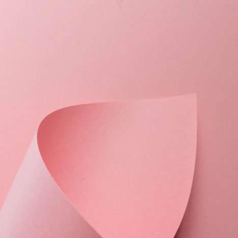 popset_sweet-rose